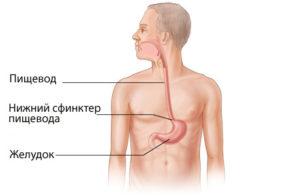 Причины и симптомы гастроэзофагеальной рефлюксной болезни